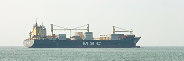 MSC?? Name Unknown